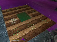 Creativerse Lettuce Seeds planted 2017-08-11 21-13-15-32