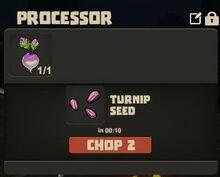 Creativerse Turnip to seeds002