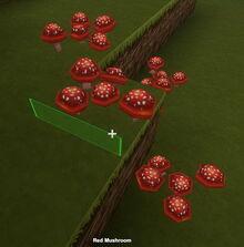 Creativerse red mushrooms001
