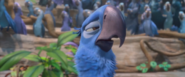 Rio 2 - New Scenes of Soccer 2