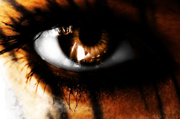 File:Animal inside me tiger eye by summon my soul-d38bpg1.png