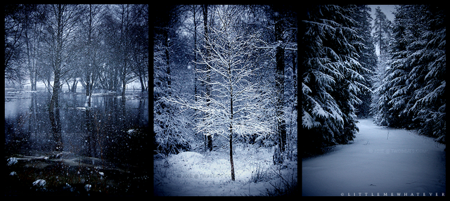 File:Winter.png
