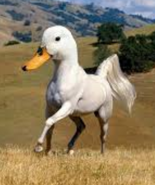 File:Horse-Duck.png