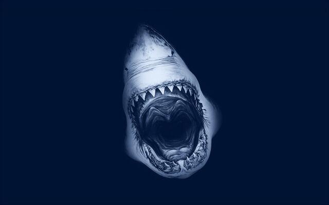 File:Shark-attack-art.jpg
