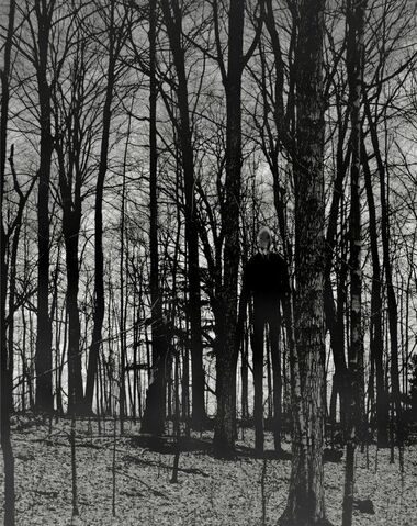 File:Slender-man-in-woods.jpg