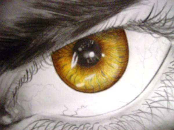 File:Gold Eye by missmuffin90.jpg