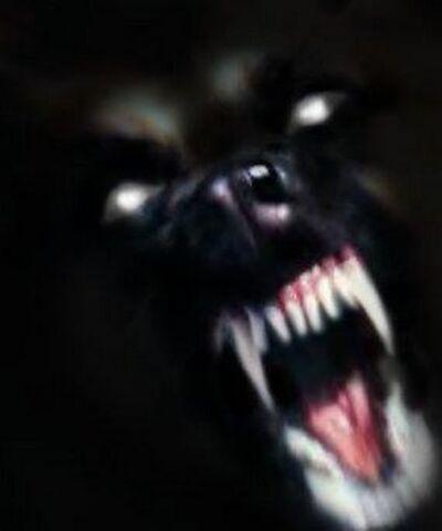 File:Werewolf-1.jpg