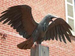 Ravenranger