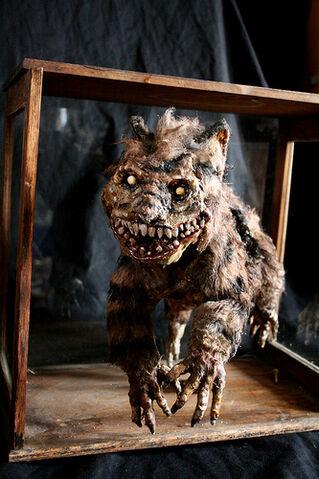 File:Creepy cheshire cat 4.jpg