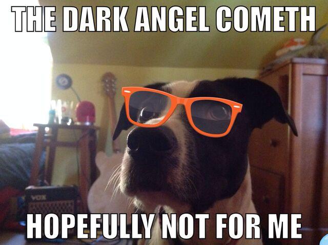 File:DarkAngels.jpg