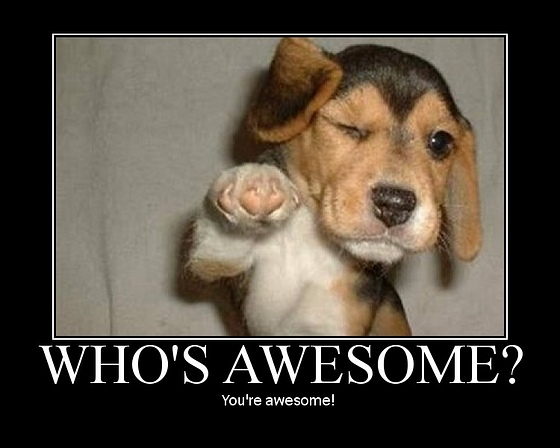 File:Who's awesome?.jpg