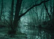 DarkSwamp