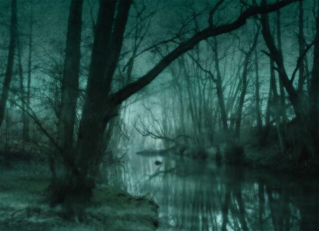 File:DarkSwamp.jpg