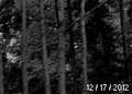 Thumbnail for version as of 16:40, December 17, 2012