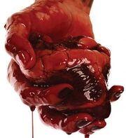 Bloody.heart