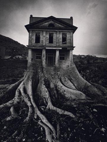 File:Ju tree house.jpg