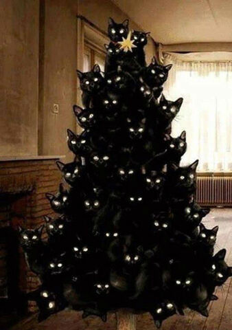 File:Crazy-cat-lady-christmas-tree.jpg
