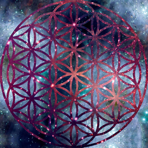 File:Flower of life by ludi vine-d4kcy6j.jpg