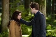 Bella y Edward
