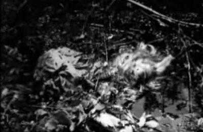 File:Wilder crime scene.JPG