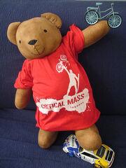 Critical mass bear