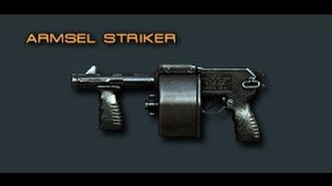 Cross Fire China Armsel Striker Review !