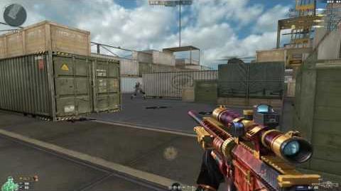 Cross Fire China -- SR25-Burning Shot -GamePlay-!