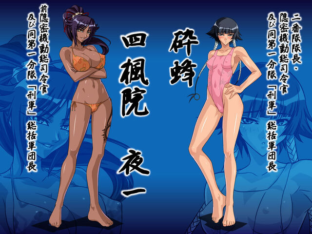 File:Orange bikini yoruichi with soifon.jpg