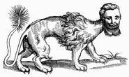 21. Topsell's Manticora (1607) (1)