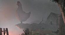 Pollo maligno-0