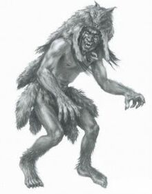 A drawing of a Skin-Walker weaing the pelt of a wolf.