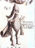 Bishop-fish