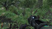 Crysis 2012-02-19 16-17-27-13