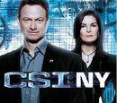 Novena temporada de CSI: NY