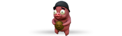 Back pigbag b