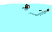 Lightzb chswim
