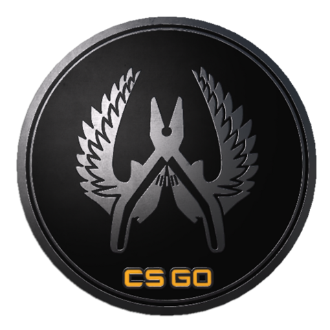 File:Csgo-collectible-pin-guardian-elite.png