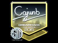 Csgo-cluj2015-sig cajunb foil large