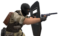 P shield usp cz