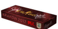 PGL Krakow 2017 Souvenir Packages/Gallery