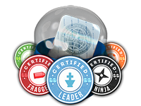 Csgo-stickers-team roles capsule pw