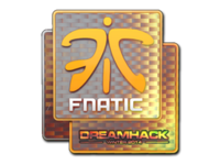 Csgo-dreamhack2014-fnatic holo large