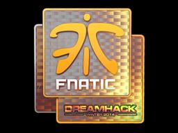 File:Csgo-dreamhack2014-fnatic holo large.png