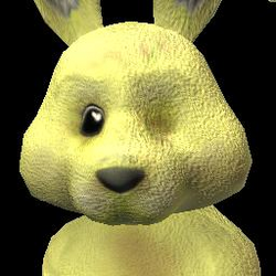 Social Bunny (3) FP