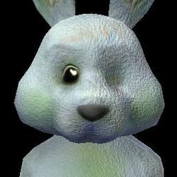 Social Bunny (3) FC