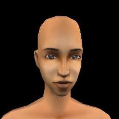 Adult Female - 11 Archcmay
