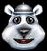 CNK Polar Beta Icon