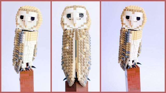 File:Barnowl.jpg
