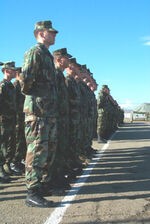 ReligiousLibertarian Army in formation