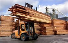 Softwood470 cp 2793826